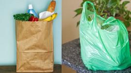¿Bolsas de plástico o bolsas de papel?