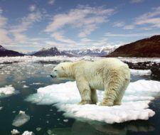La evolución se acelera por el calentamiento global