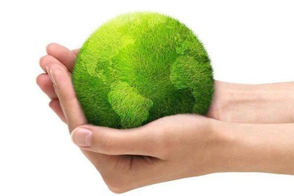 Día Mundial Del Medio Ambiente En España 2019 Elblogverdecom
