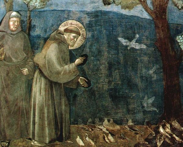 san francisco asis