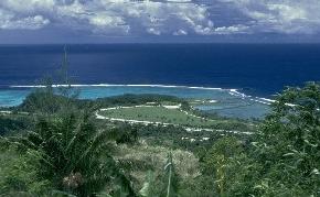 ¿Puede funcionar un bosque que ha perdido todas las aves? El caso Guam