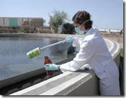 Higiene personal y fármacos principales culpables de la toxicidad de aguas residuales