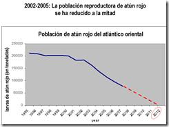 grafico reducción del atún rojo - clic para agrandar