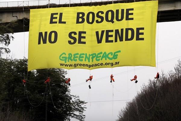 campanas greenpeace
