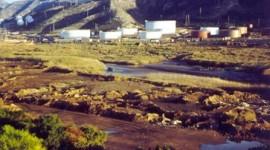 Contaminación del suelo: por qué se produce y cómo evitarla