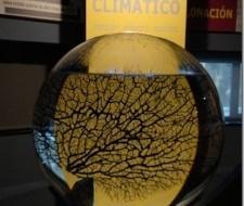 Cambio Climático: Ecologistas en Acción cree que países industrializados no se comprometen
