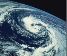 Extinción de especies a causa del cambio climático