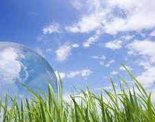 ¿Qué es la ecología?