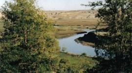 El Tigris puede secarse en 2040