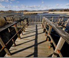 Medio Ambiente combate la sequía en Daimiel