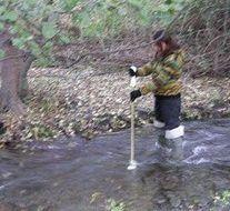 Ecología de los ríos e impacto de plantaciones de Eucalipto