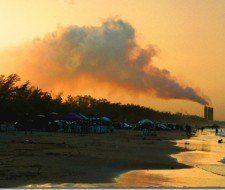 Top 5 de las ideas de medio ambiente insólitas