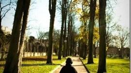 Top 10 de las ideas de medio ambiente insólitas