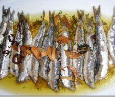 Medio Marino y Comisión Europea cierran pesca de atún rojo y de anchoas