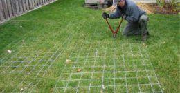 Invernaderos caseros: ventajas, tipos y cómo construirlos
