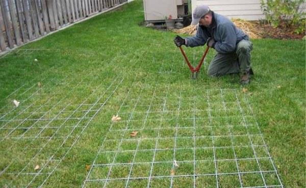 Como construir un invernadero 1