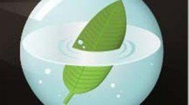 Ecología y Medio Ambiente 2010