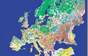 Biodiversidad de los suelos en peligro