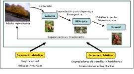Factores abióticos de la ecología