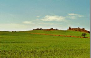 Cambio Climatico | Como se adaptara la agricultura mediterranea