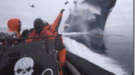 "Sea Shepherd | Documental ""Piratas Ecológicos"" contra la caza de ballenas"