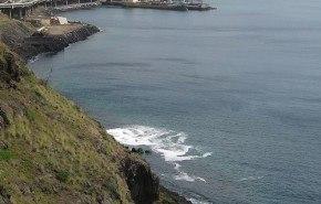 Cremas solares, ¿Un tóxico para los seres vivos del mar?