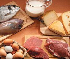Contaminación biótica de los alimentos