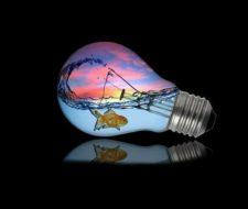 Ecosistemas acuáticos y terrestres: desequilibrios y conservación