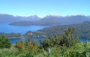 La disminución de la capa de ozono afecta al crecimiento de los árboles en Patagonia