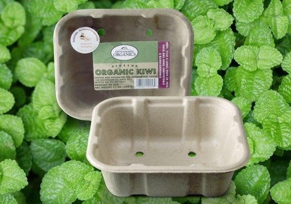 materiales-que-son-biodegradables