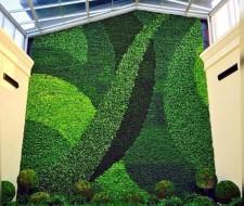 Paredes verdes repletas de plantas