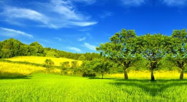 amenazas-del-medio-ambiente