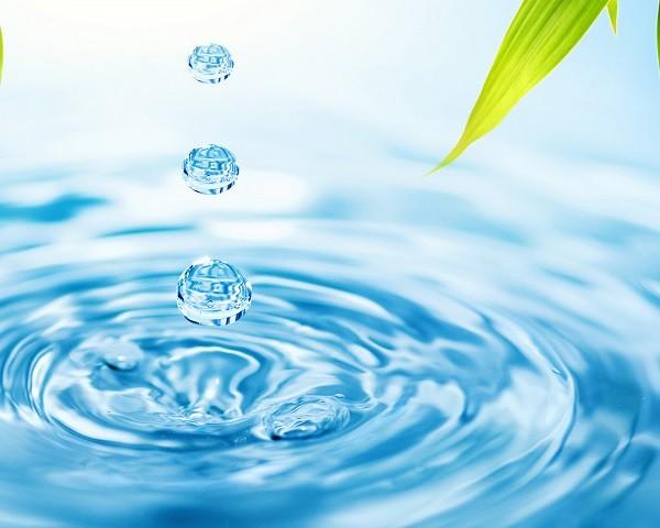 por que es importante el agua