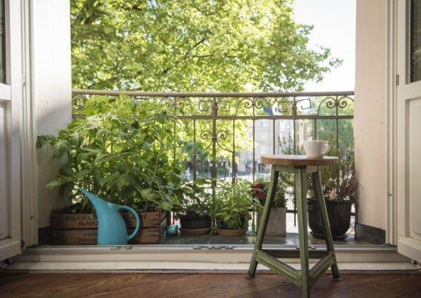 Como crear tu huerto urbano espacio