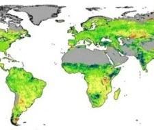 ¿Qué es el efecto de fertilización por CO2?