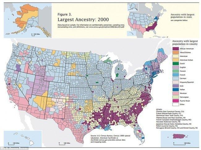 40-mapas-que-explican-el-mundo-Ascendencia-americana-por-condados