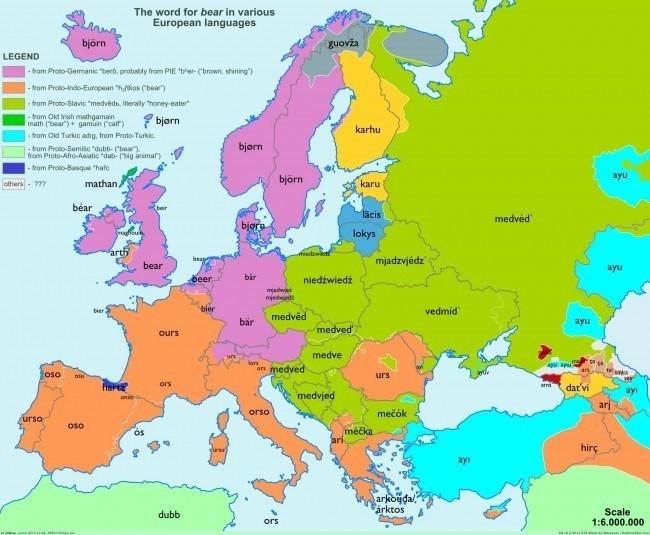 40-mapas-que-explican-el-mundo-la-palabra-oso-bear-en-las-lenguas-europeas