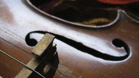 9-productos-que-utilizas-a-diario-y-que-no-sabes-que-contienen-ingredientes-animales-madera-instrumentos