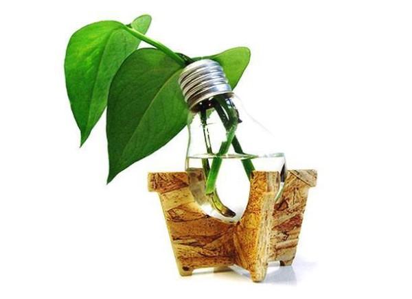 macetas-recicladas-para-el-jardin-bombilla