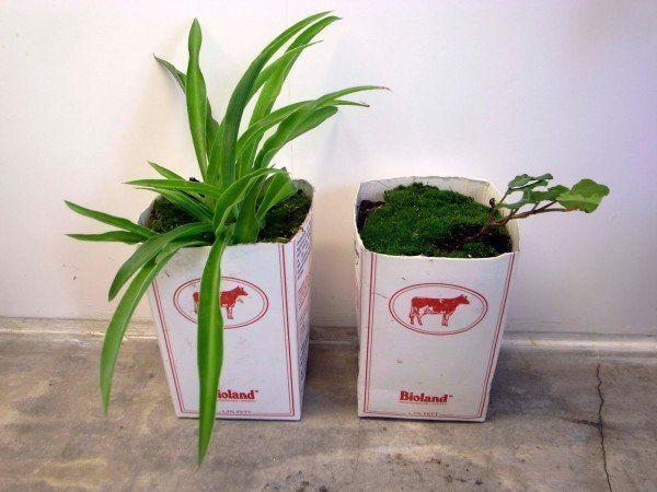 macetas-recicladas-para-el-jardin-cajas