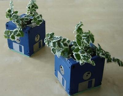 macetas-recicladas-para-el-jardin-disquettes