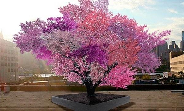 un-arbol-experimental-ha-sido-capaz-de-dar-40-tipos-diferentes-de-fruta