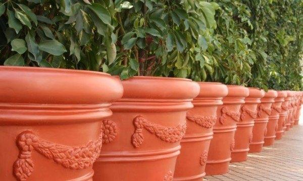 como-construir-un-jardin-de-macetas-auto-riego-en-un-barril--macetas