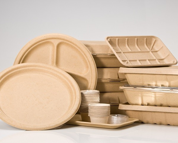 cajas biodegradables