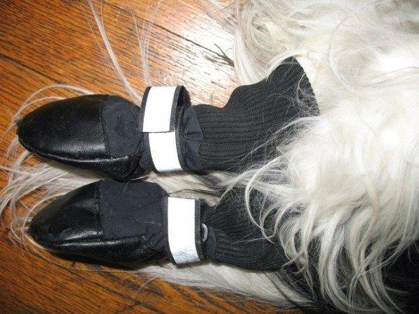 21-remedios-caseros-y-naturales-para-mascotas-calcetines