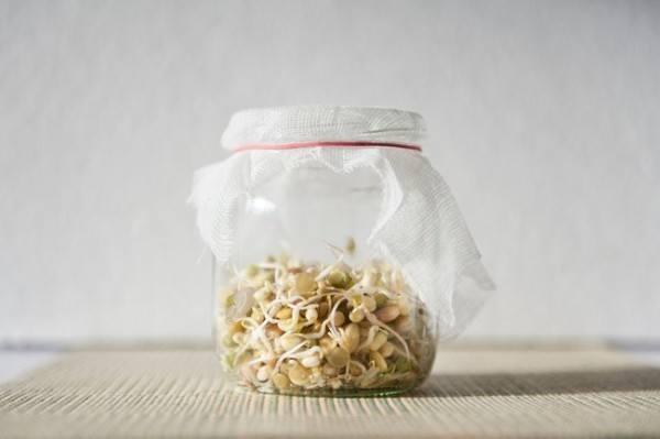 25-nuevos-usos-para-tarros-y-botes-viejos-reciclaje-semillas-que-germinen