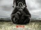 El documental que podría salvar el parque nacional más antiguo de África