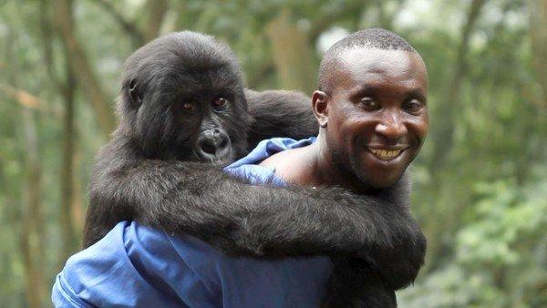 el-documental-que-podria-salvar-parque-nacional-mas-antiguo-de-africa