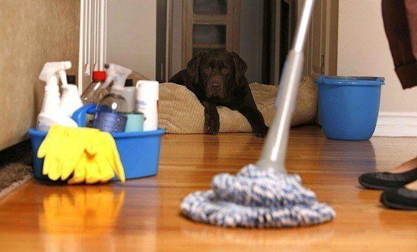 emedios naturales para limpiar-en-casa