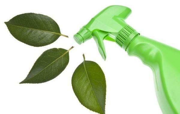 limpiar con productos verdes